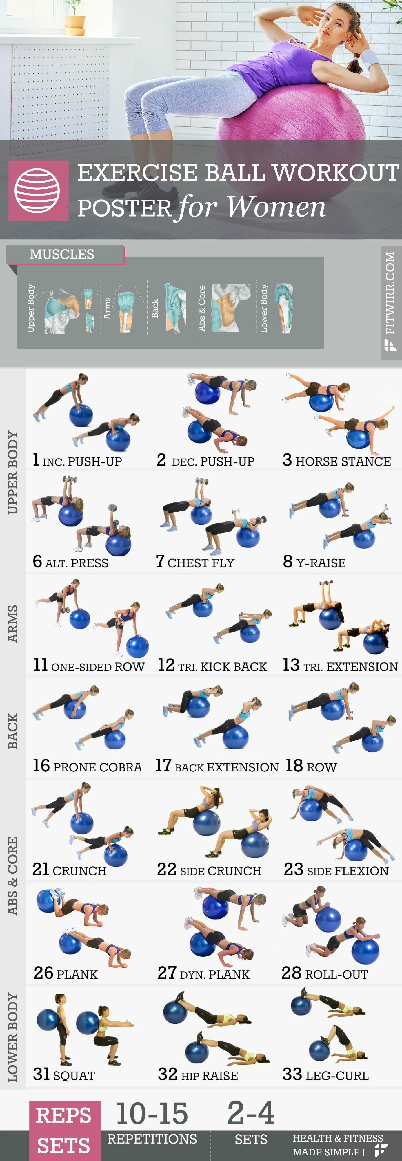 Stability Ball Exercise Workout Poster Laminated 19 X27 Ball Exercises Workout Posters Workout
