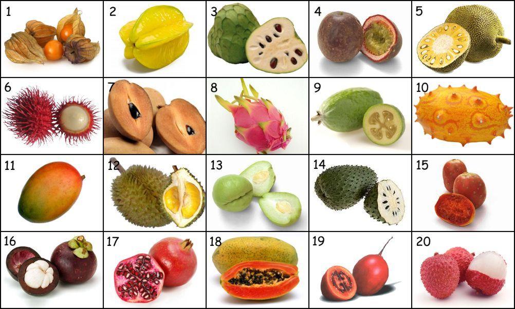 урок изображения название экзотических фруктов с картинками лучше заранее