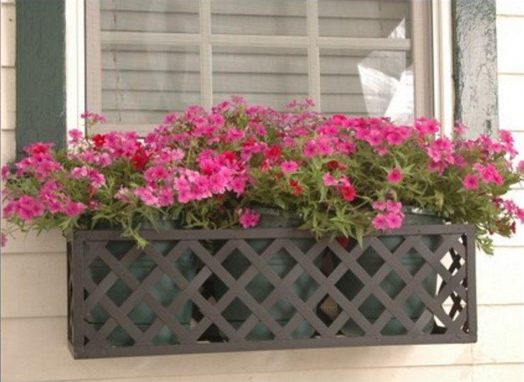Wrought Iron Brackets For Window Boxes Aesthetic Appeal Of Wrought Iron Window Boxes Interior Desig Window Box Plants Window Box Flowers Balcony Flower Box