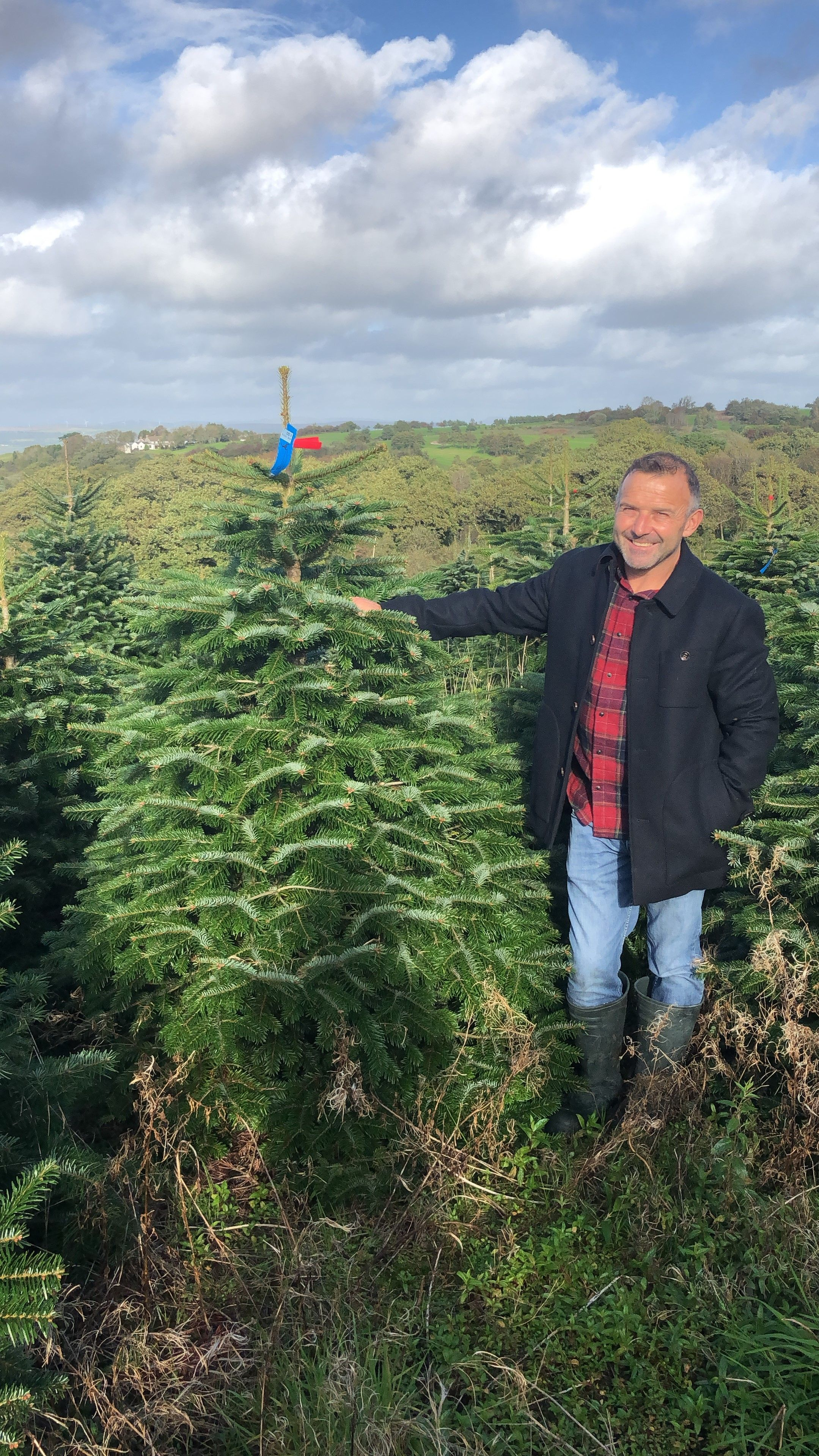 Rob Morgan Owner Of Gower Fresh Christmas Trees Thisismywales Fresh Christmas Trees Natural Landmarks Rob Morgan