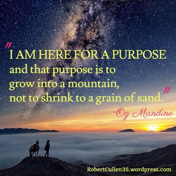 Do you know what your life purpose is? If so, are you doing your utmost to bring it forth into this world? If you don't know your life purpose, here is an exercise that can help you: http://ceoofyour.life/2014/06/27/how-to-align-your-life-purpose-with-your-career/