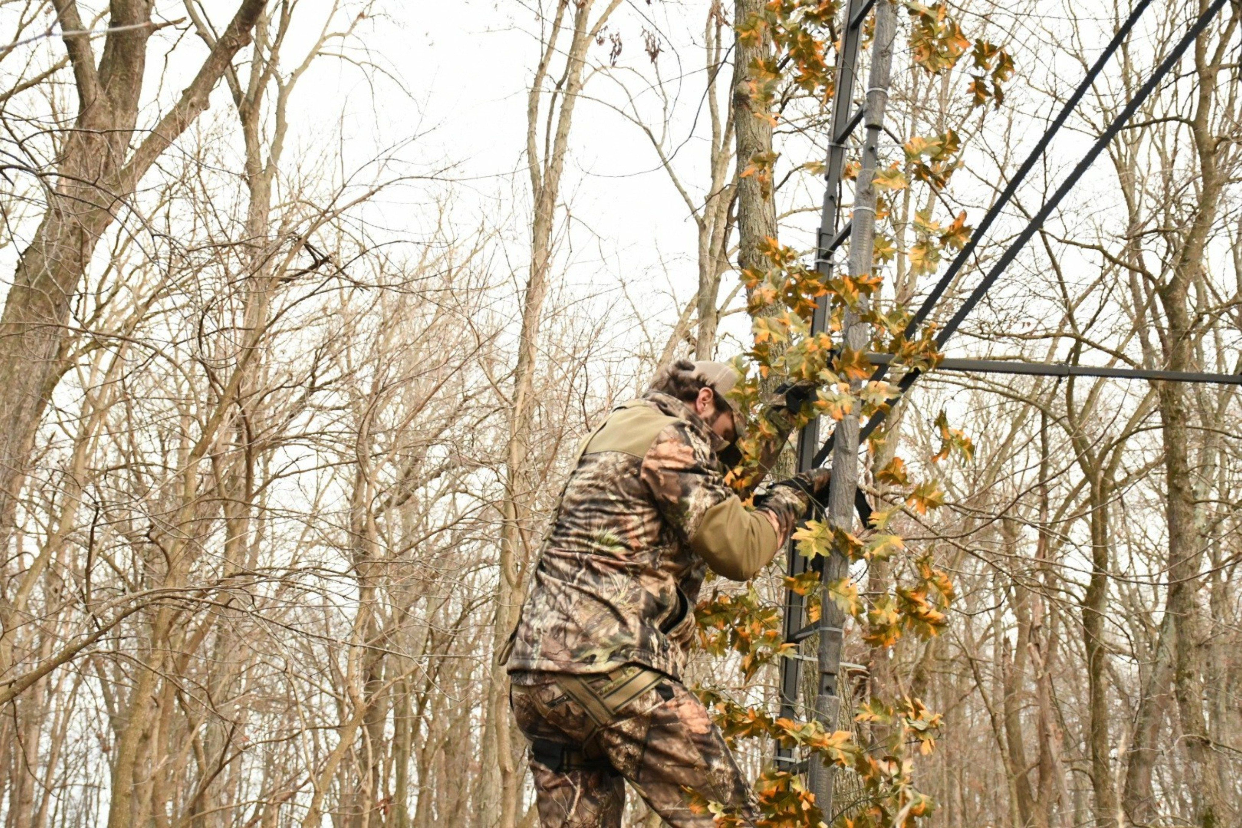 Ladderflauge Tree Stand Concealment System Tree Stand