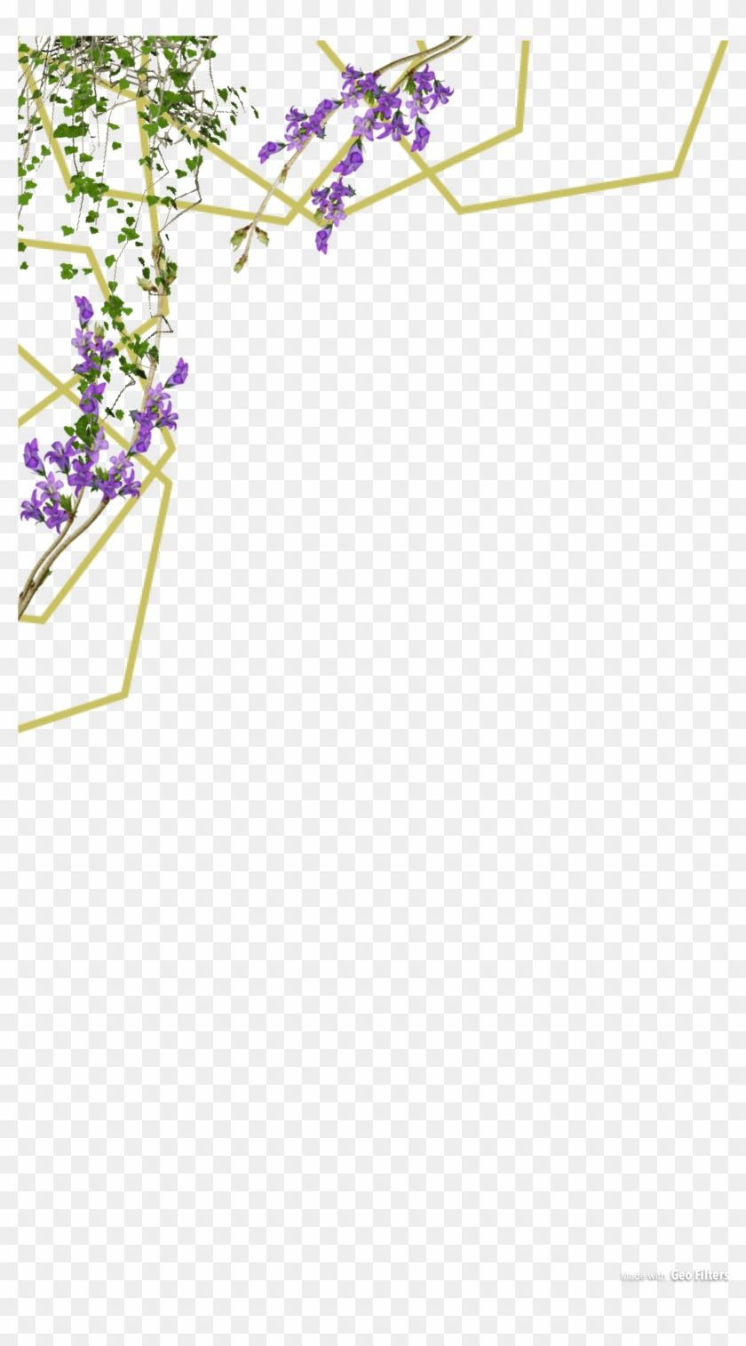 Find Hd سكرابز فلاتر سناب جاهزه Png Transparent Png To Search And Download More Free Transparent Png Images Flower Frame Floral Logo Wedding Cards Images