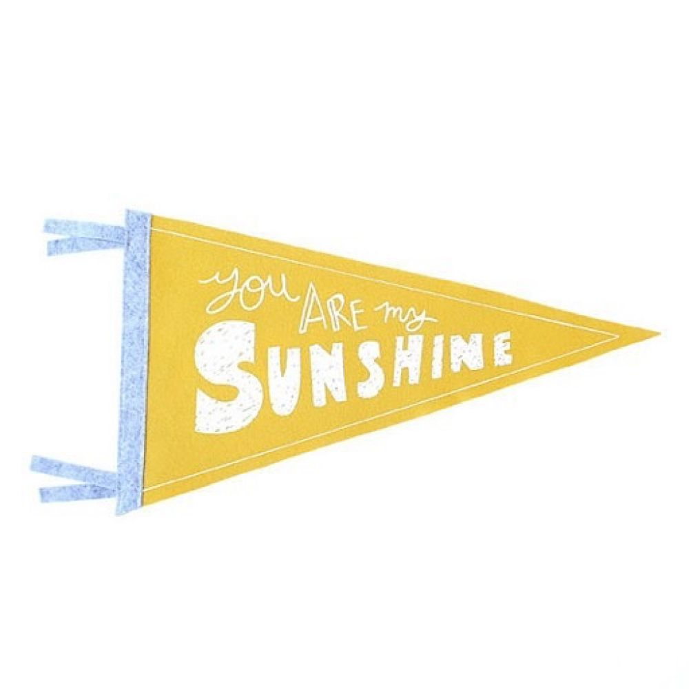 Strawberry moth wool pennant flag you are my sunshine pennants