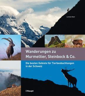 Heer, Lorenz «Wanderungen zu Murmeltier, Steinbock