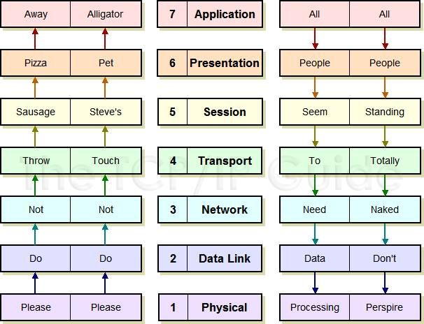 OSI Layers Networking basics, 3 network, Networking