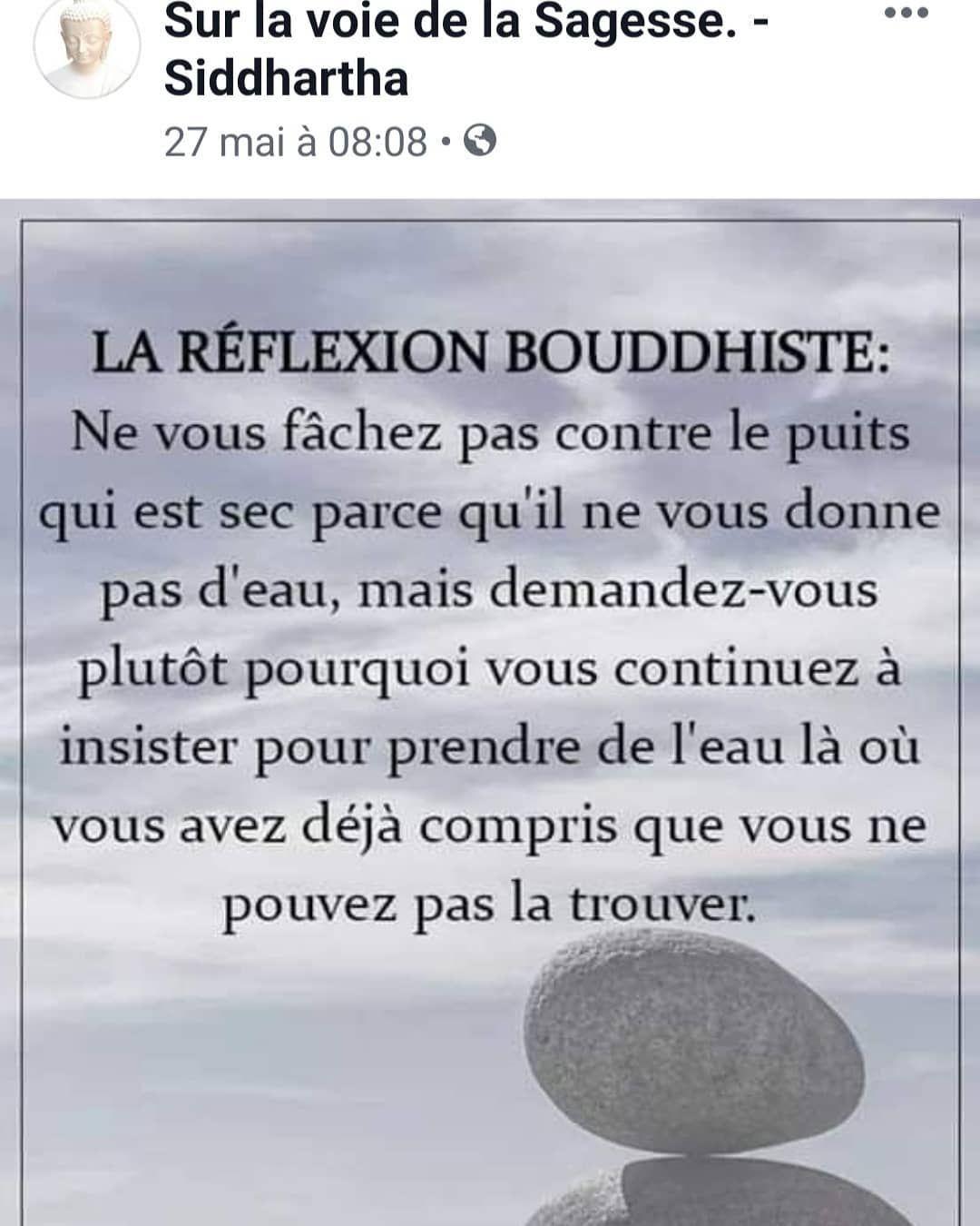 Telechargez Votre Livre Gratuit Pour Apprendre A Mediter Chakra Bouddha Bouddhisme Zen Zenattitude Spiritualit Citation Sagesse Citation Phrase Citation