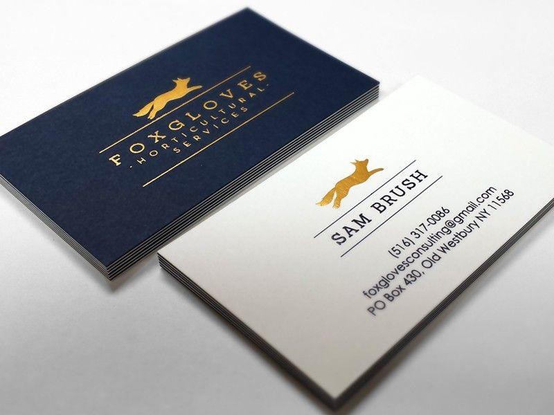 Vistaprint 100 Visitenkarten In Verbindung Mit 100