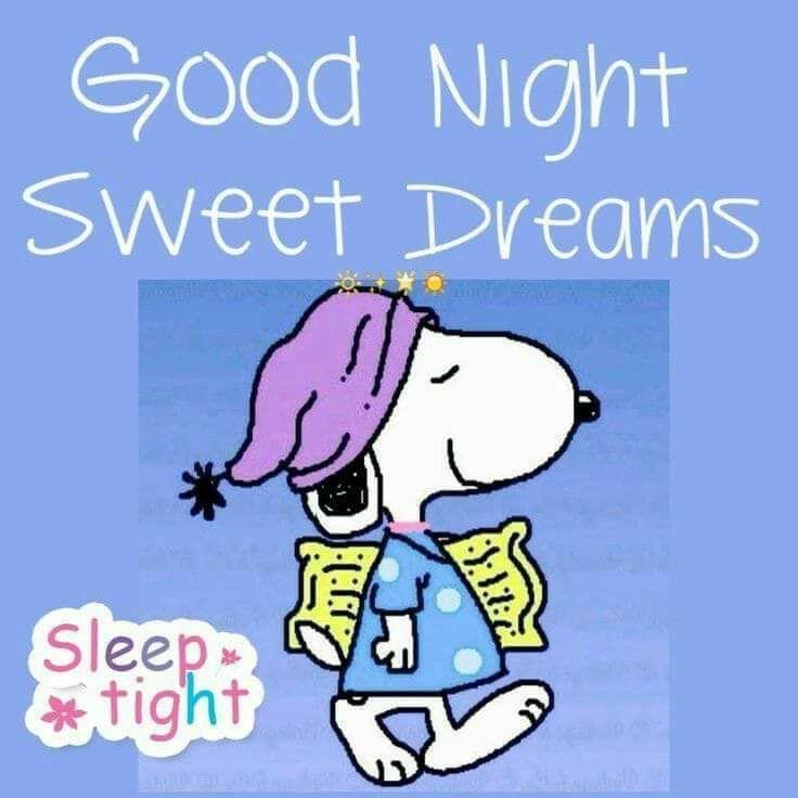 Night night | Goodnight snoopy, Snoopy quotes, Snoopy love
