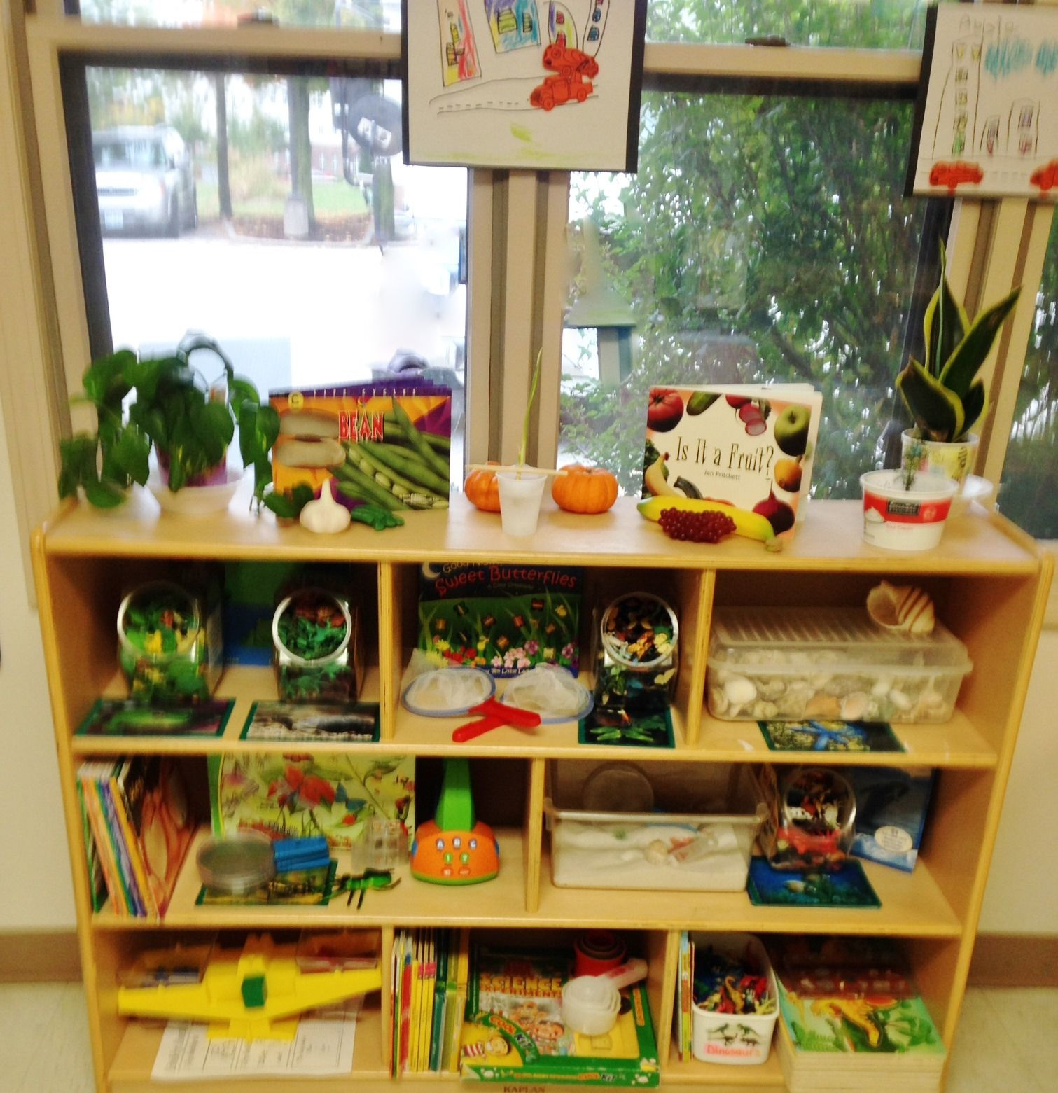 Science Classroom Design Ideas: Great Looking Science Center With Plants, Books And
