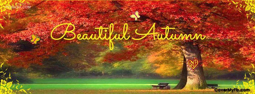 Free Fall Facebook Covers: Beautiful Autumn Facebook Covers, Beautiful Autumn FB