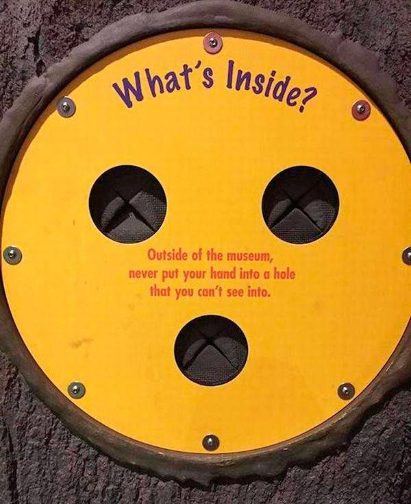 Funny pics~ What's Inside? Never put your hand into a hole outside of museum