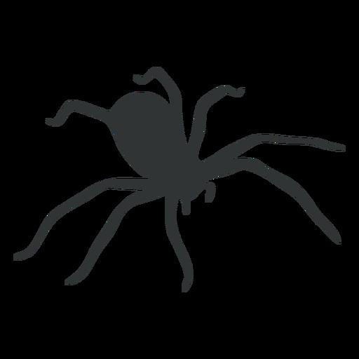 House Spider Arachnid Silhouette Ad Spider Arachnid Silhouette House Business Icons Vector Silhouette Png House Spider