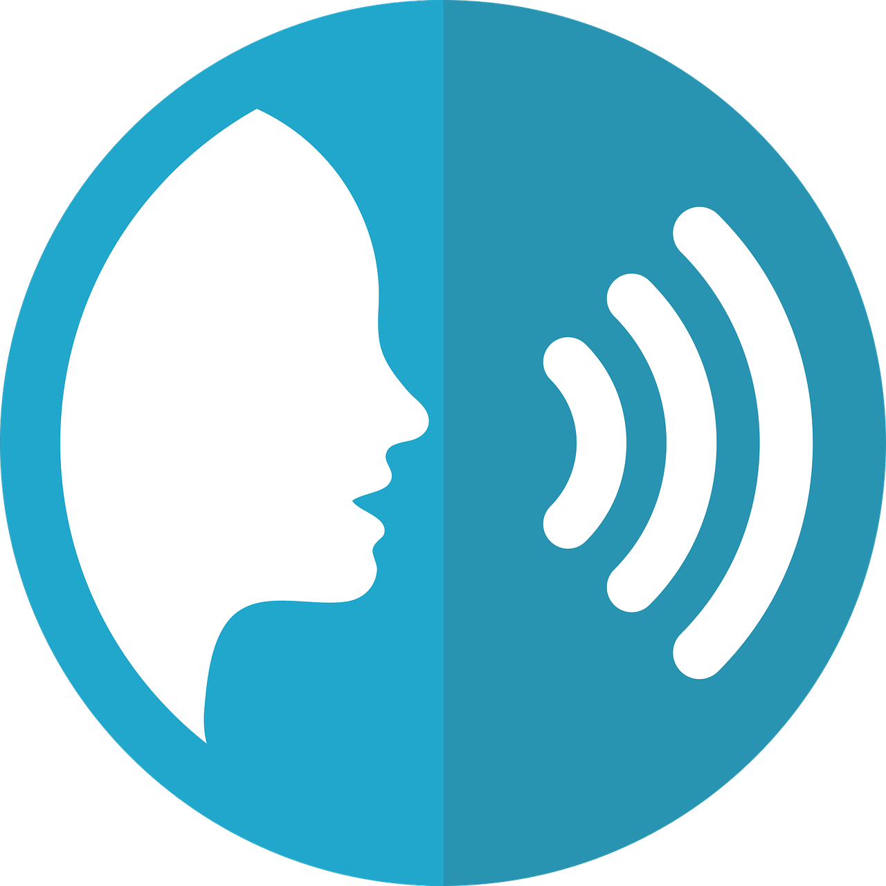 Voice Recording Tools The Voice Search Optimization Human Voice