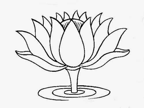 Sketsa Bunga Teratai Gambar Pemandangan Jjjjjjj Flower