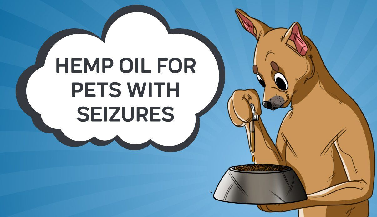 Seizures And Epilepsy In Pets What You Need To Know Seizures Epilepsy In Dogs Pets