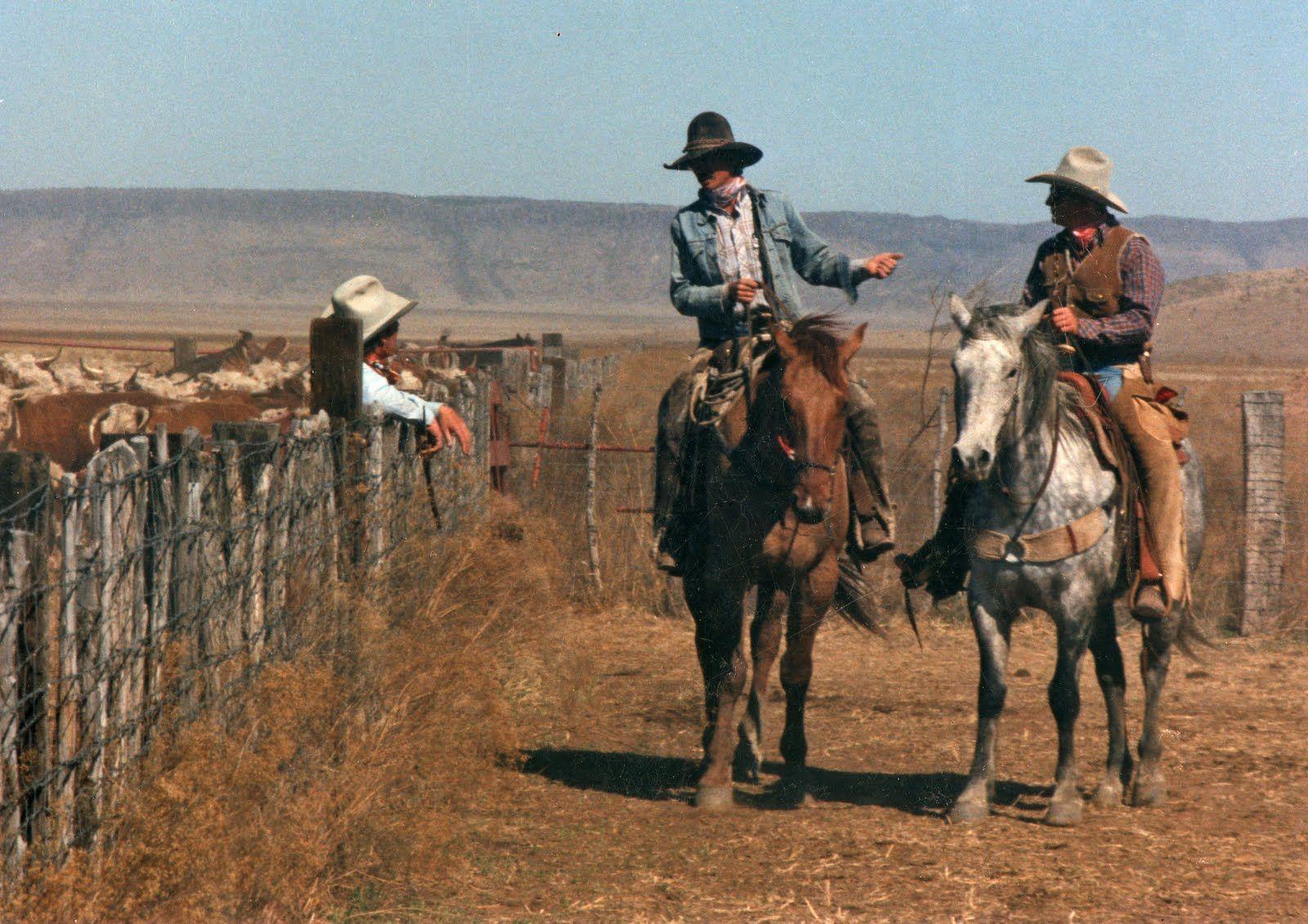 жидкость ковбойки на ранчо фото это торжественное событие