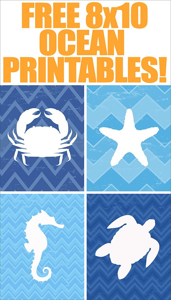 graphic relating to Free Printable Beach Stencils identified as Ocean Animal Totally free Printables mounted of 4 Printables Seaside