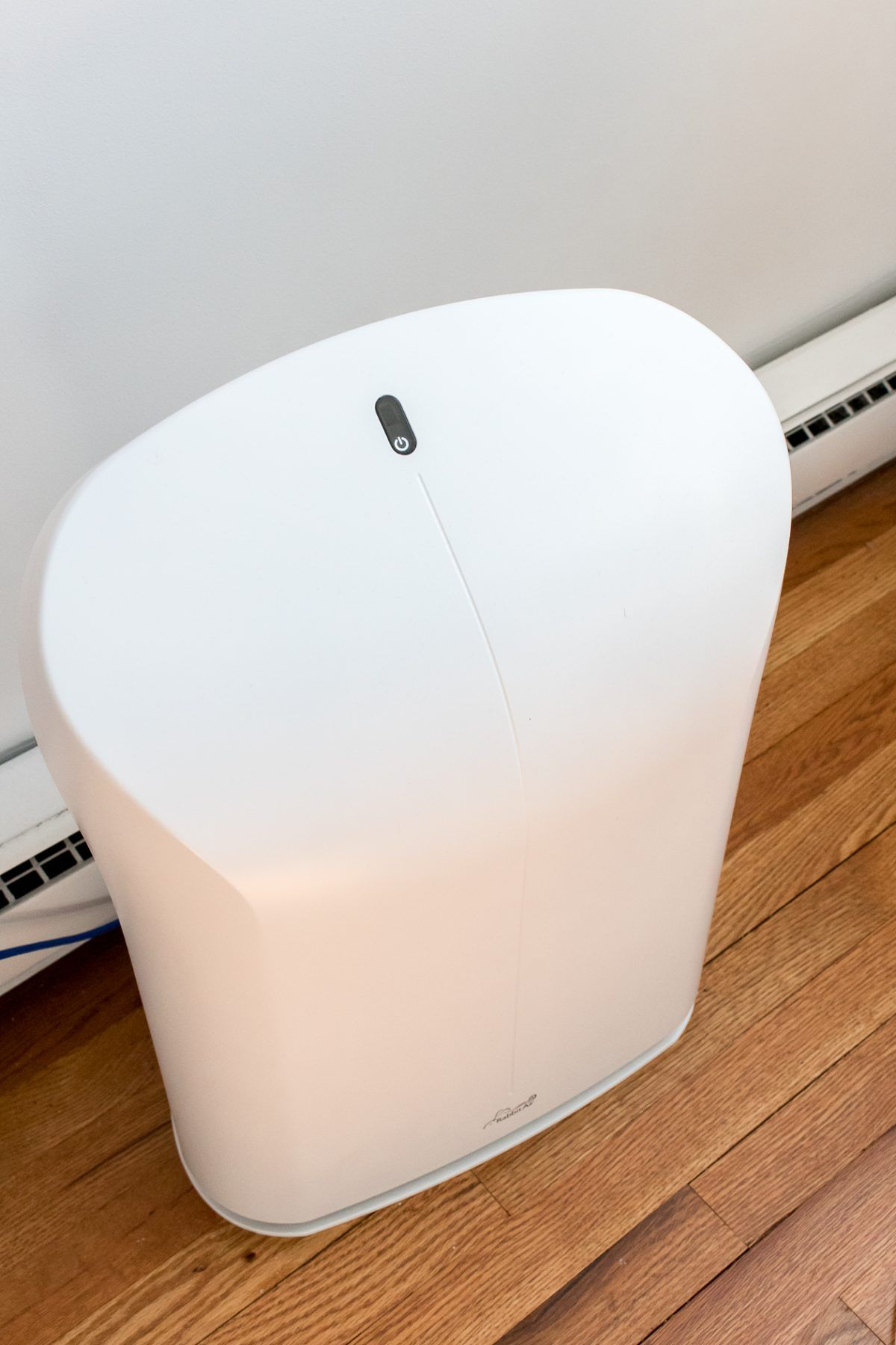 The Best Air Purifier for Dust Allergies Dust allergy