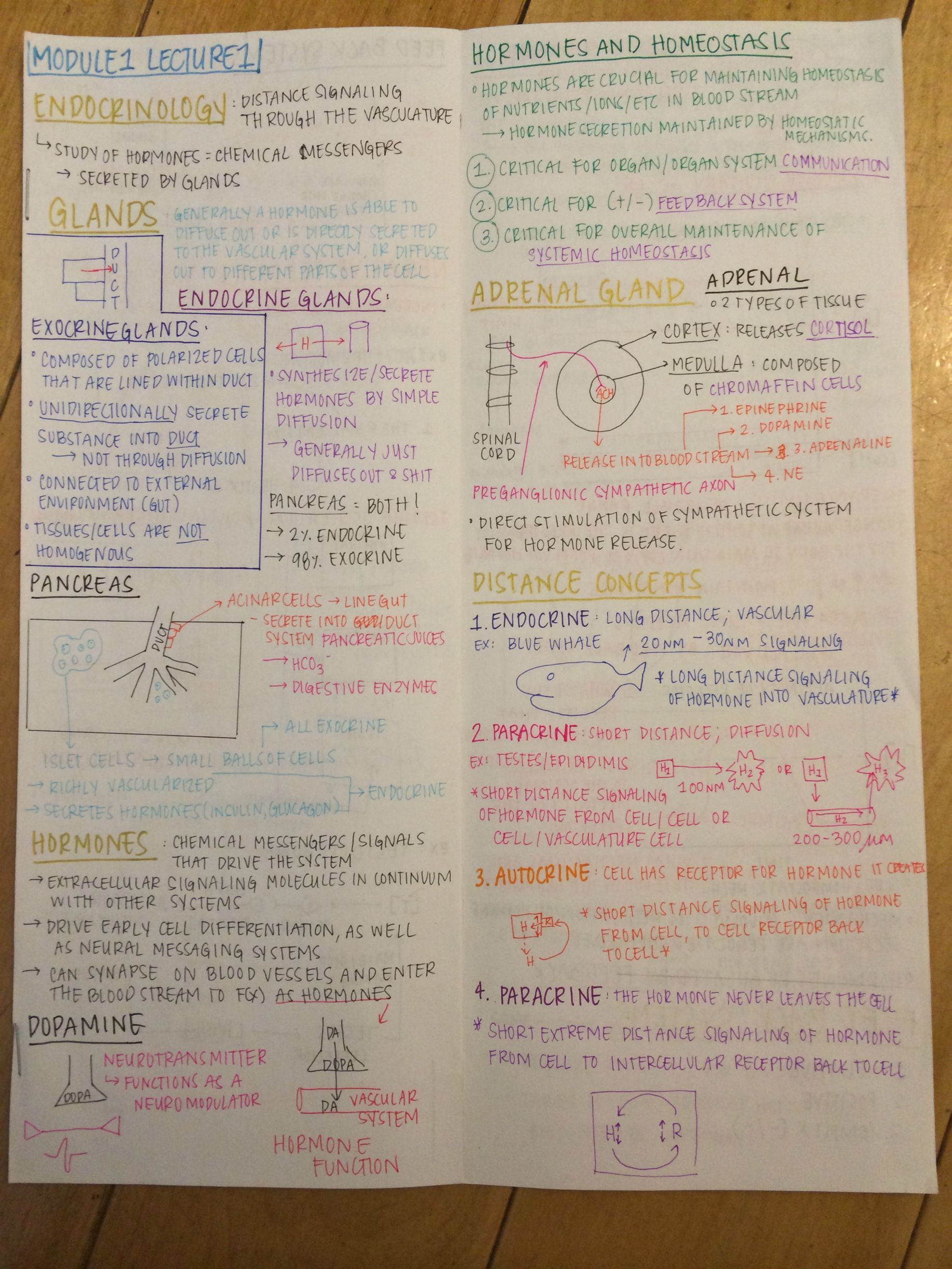 Module 1 Lecture Notes | Handwritten | Pinterest | Note, School and ...