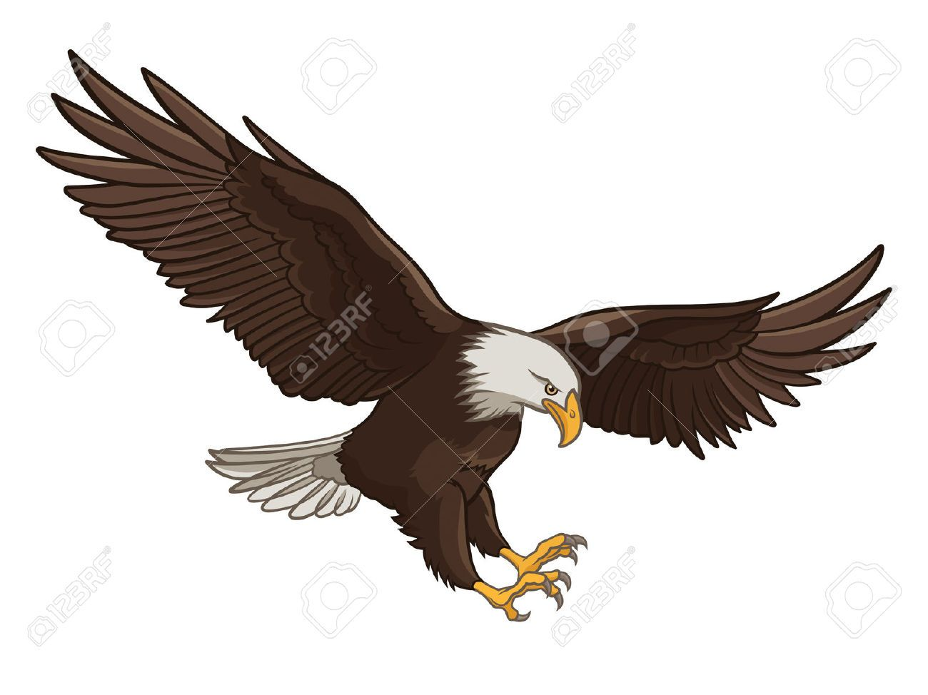 Vector Illustration Of A Bald Eagle, Isolated On A White ...