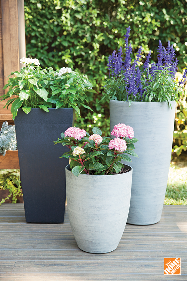 pin by the home depot canada on spring rh pinterest at