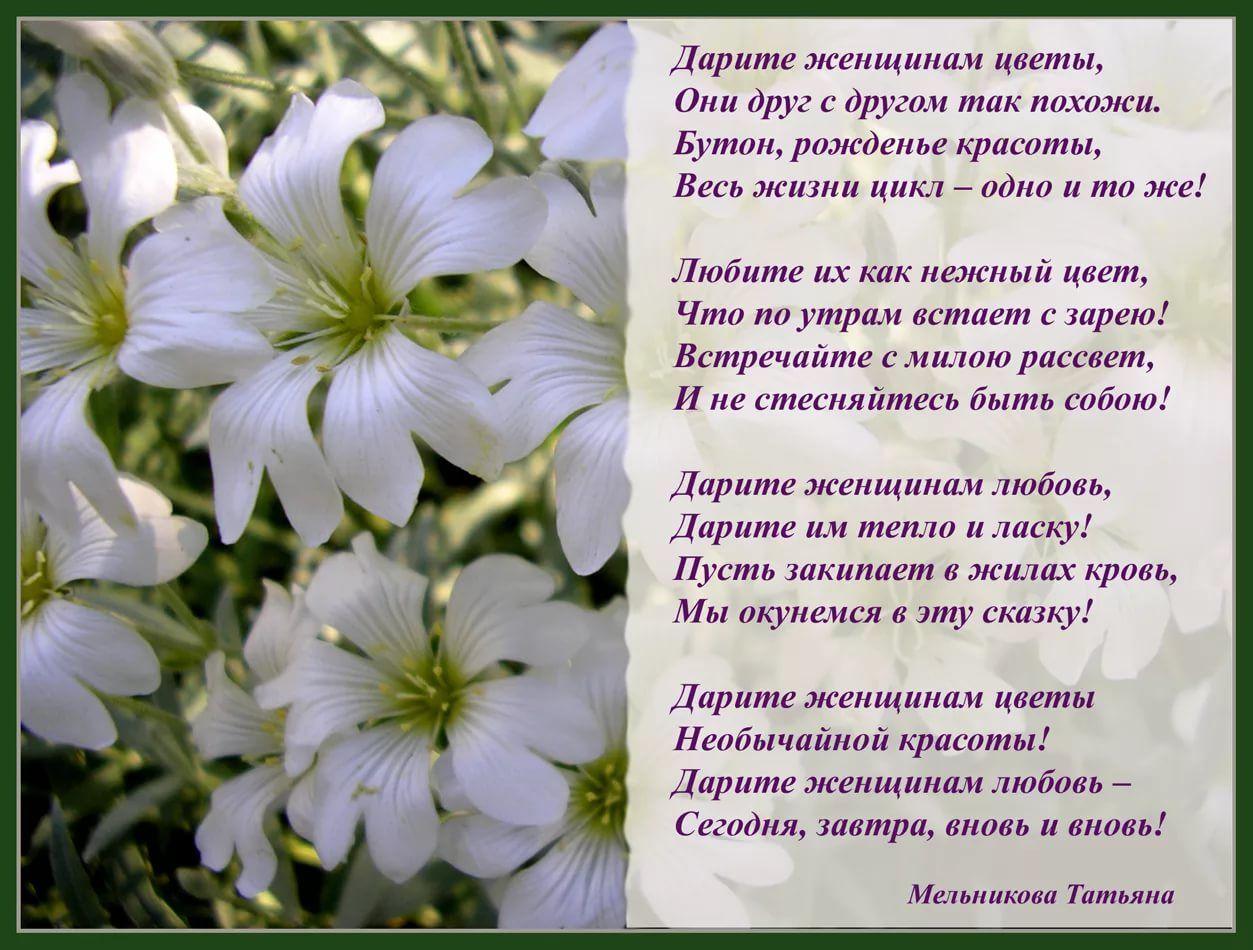 цветы картинки с цитатами какой киноленте они