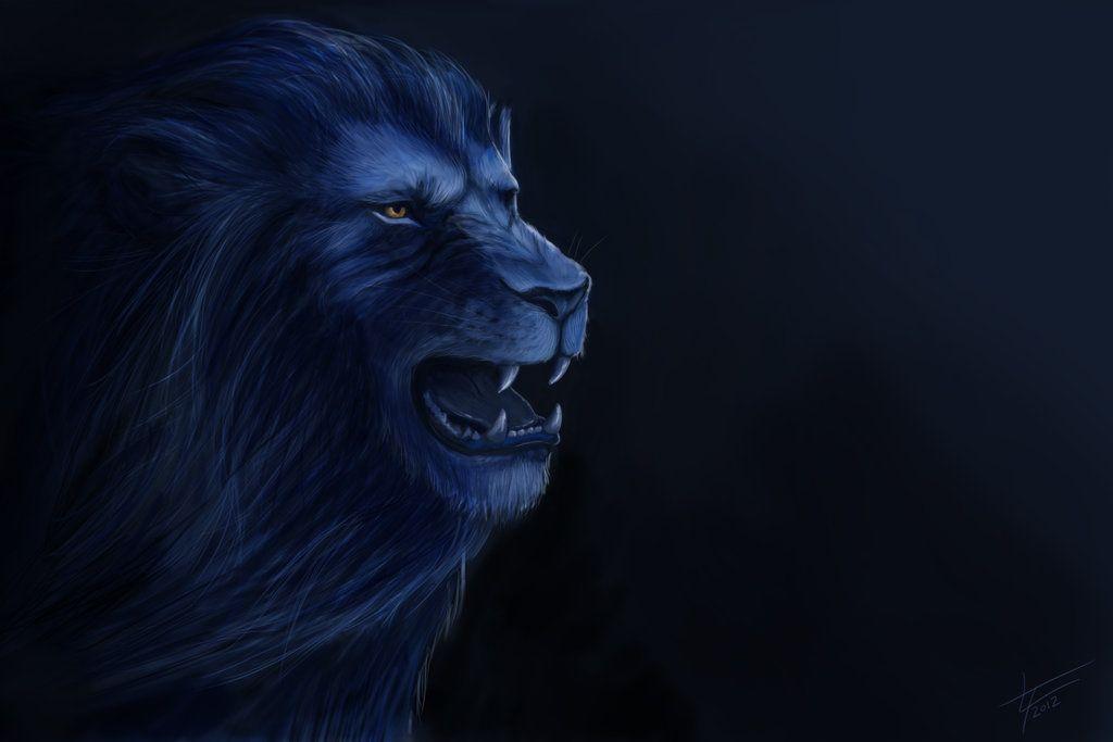 Detroit Lions \o/ by Laurenryx2