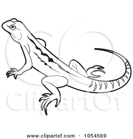 Drawings Of Lizards Royalty Free Reptile Illustrations By Lal Perera Page 1 Gecko Wall Art Reptiles Lizard
