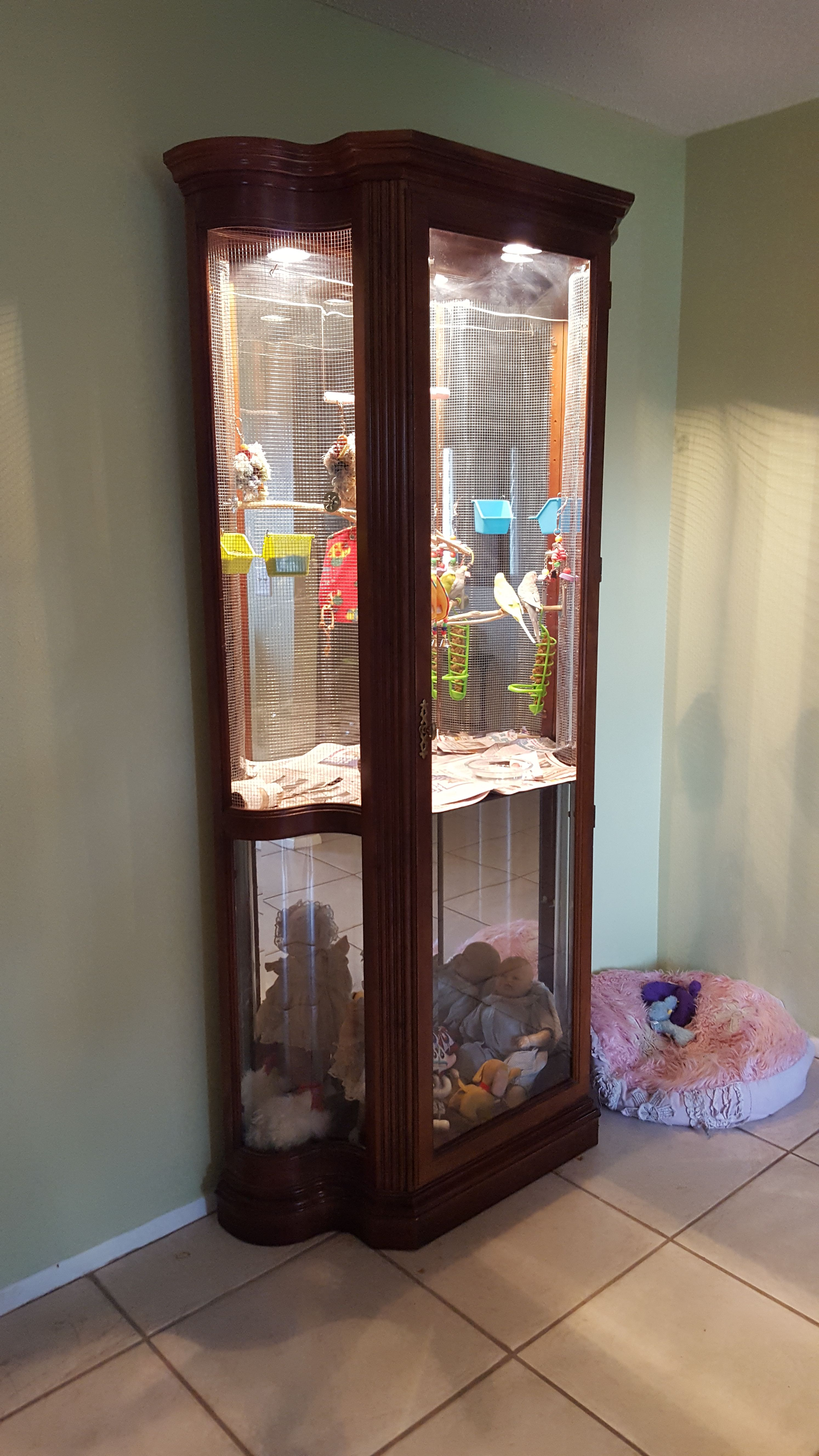 My Husband Made Me A Parakeet Cage Out Of A China Cabinet