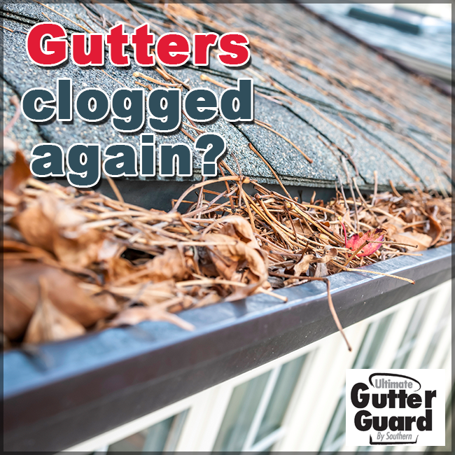 Gutters Clogged Again Tired Of Having To Climb Up And
