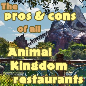 The pros and cons of all Animal Kingdom restaurants #animalkingdom