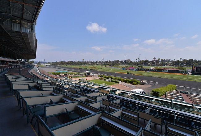 View from the Hollywood Park Clubhouse