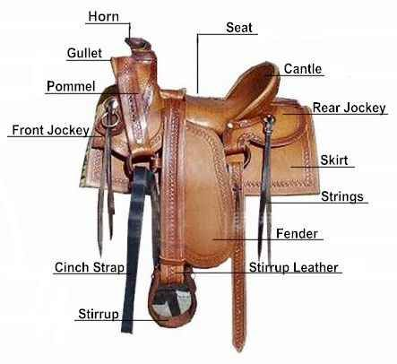History Of Western Leather Saddles Chaps Spur Straps Cowboys