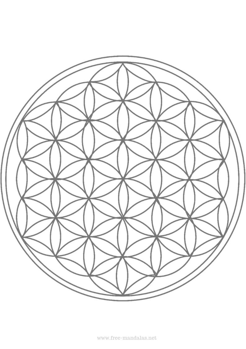 Mandala In 2021 Flower Of Life Tattoo Flower Of Life Flower Of Life Pattern