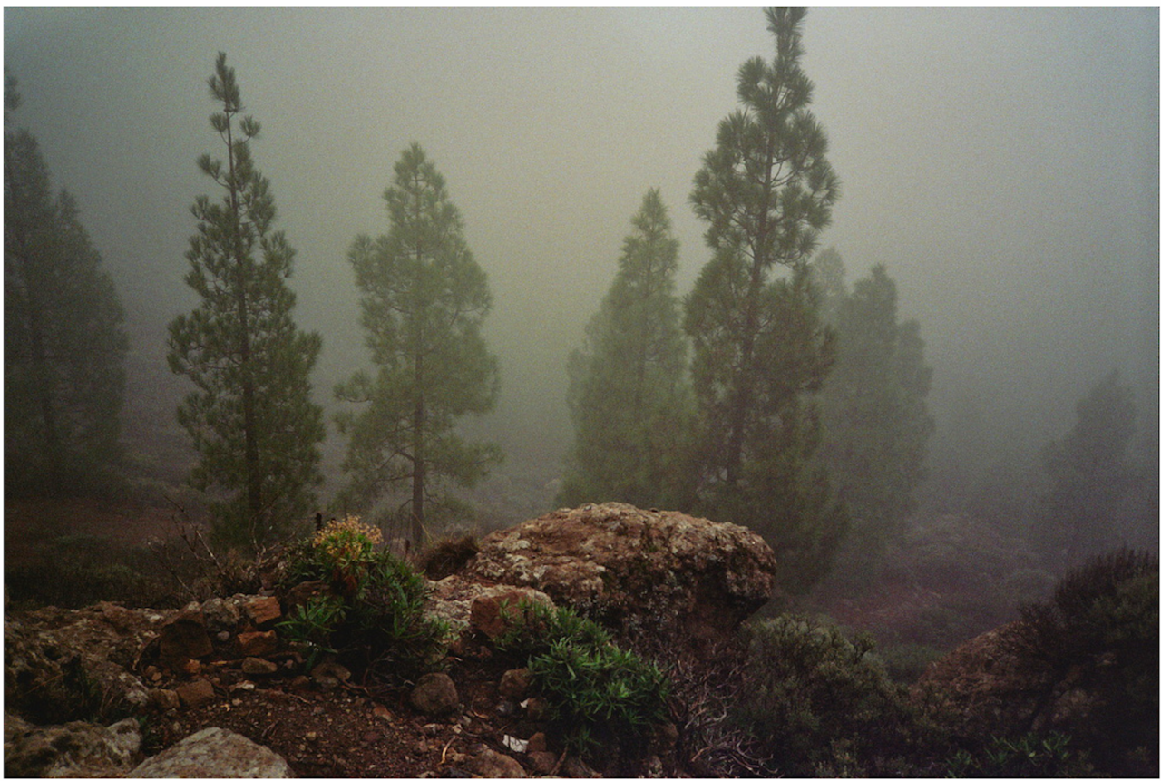 mountains Nature art, Mother nature, Landscape