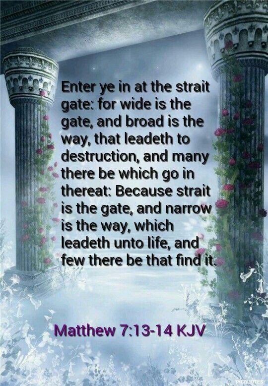 Image result for Choose you the narrow gate kjv