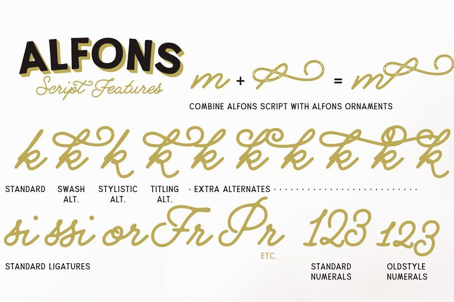 Download Alfons Collection -50% off | Custom fonts, Ligature, Intro