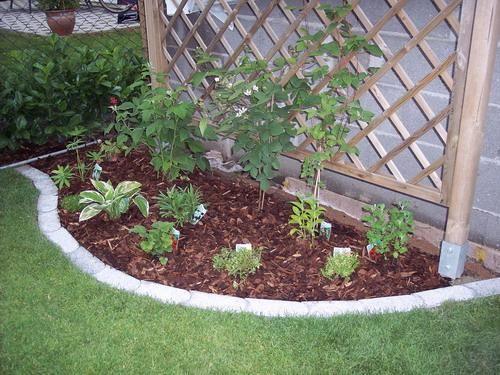 Bilder Von Beeteinfassungen Und Gartenwegen Seite 2 Gartengestaltung Mein Schoner Garten Online Gartengestaltung Garten Beeteinfassung