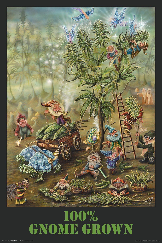 Gnome Grown (Harvesting Marijuana) Poster Print by Michael DuBois ...