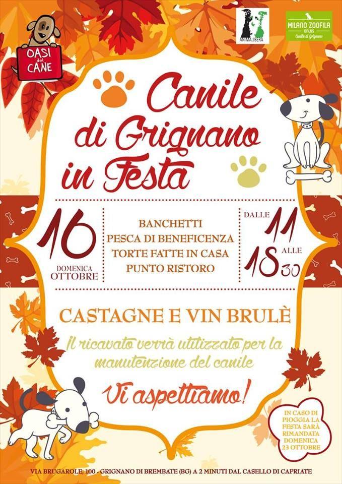 E' qui la festa? No: è lì! E' al Canile di Grignano! Torte, castagne e banchetti solidali nella domenica open day :http://www.qualazampa.news/event/e-qui-la-festa-no-e-li-e-al-canile-di-grignano-torte-castagne-e-banchetti-solidali-nella-domenica-open-day/