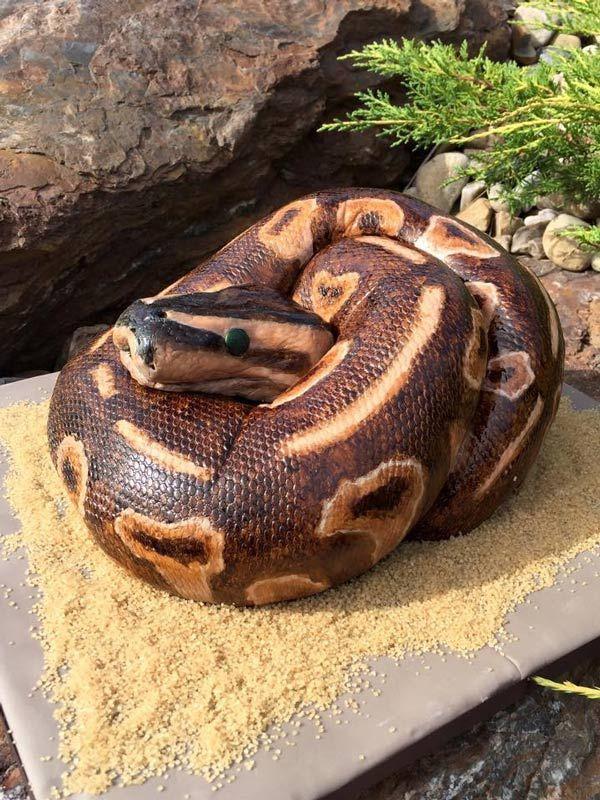 торт в виде змеи фото легендарного царя