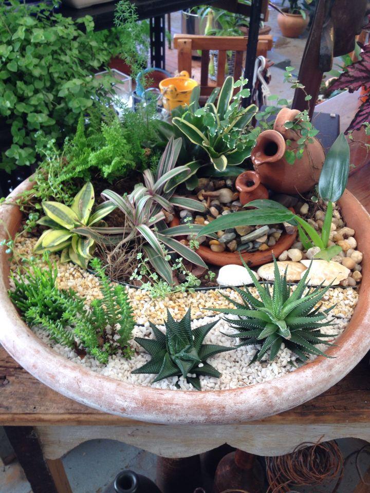 Arranjo de plantas em vaso paisagismo de interiores - Plantas grandes para interiores ...