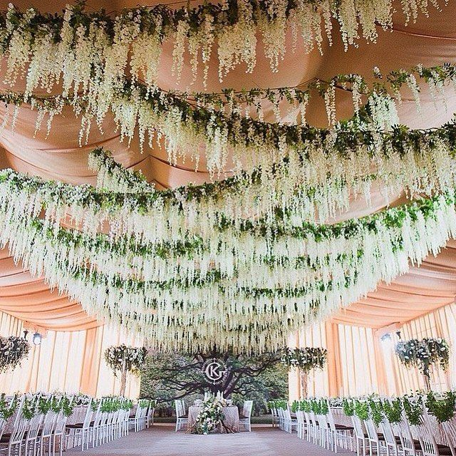 Crisscrossing Strands Of Hanging Fragrant Wisteria At