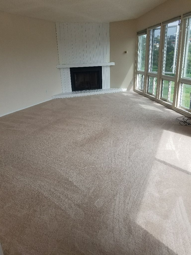 We Can Help You Choose The Best Carpet For Your Home Or Rental