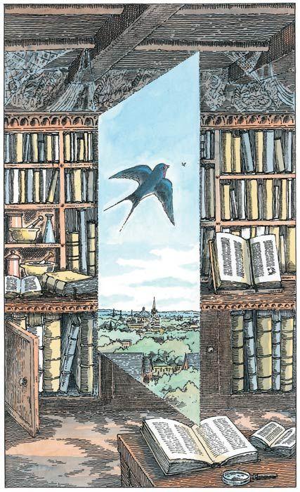 His Dark Materials Folio Illustrated Book Peter Bailey