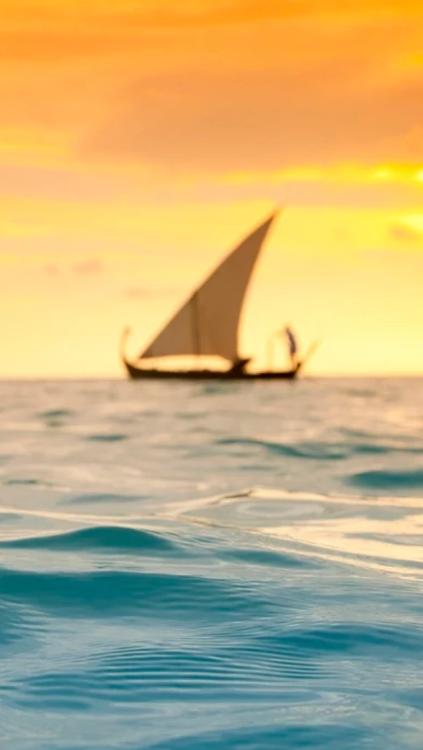 ☼ sailing