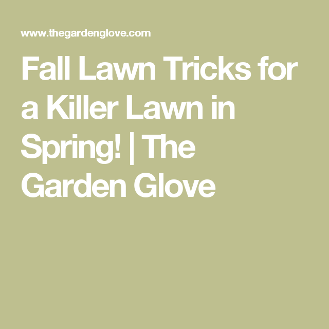 Fall Lawn Tricks for a Killer Lawn in Spring! | The Garden Glove