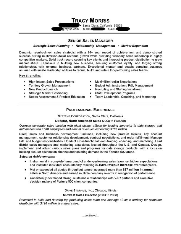 Sales Manager Sales Resume Examples Job Resume Samples