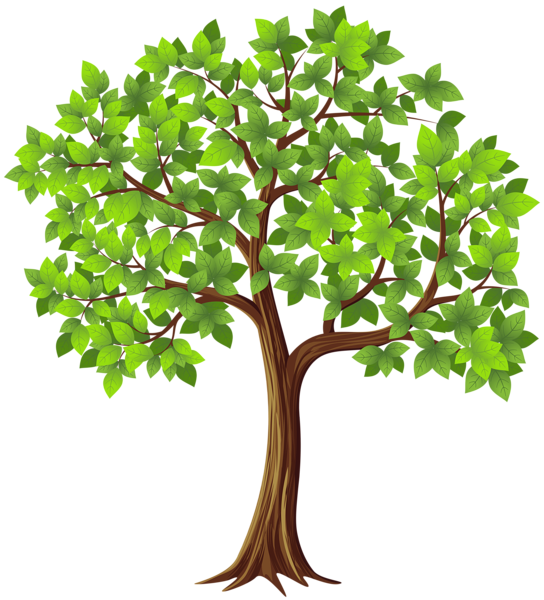 Tree Png Transparent Clip Art Image Family Tree Art Tree Clipart Tree Art